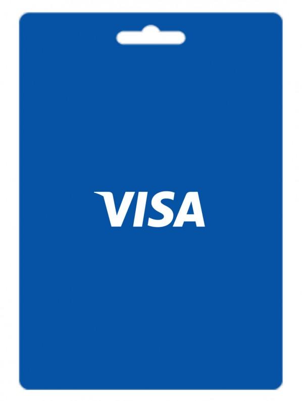 ویزا کارت 1 دلاری آمریکا